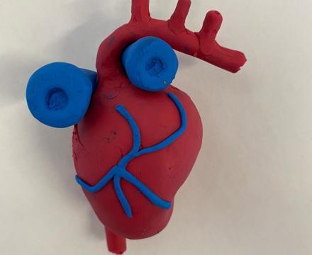 Plasticine Heart 1
